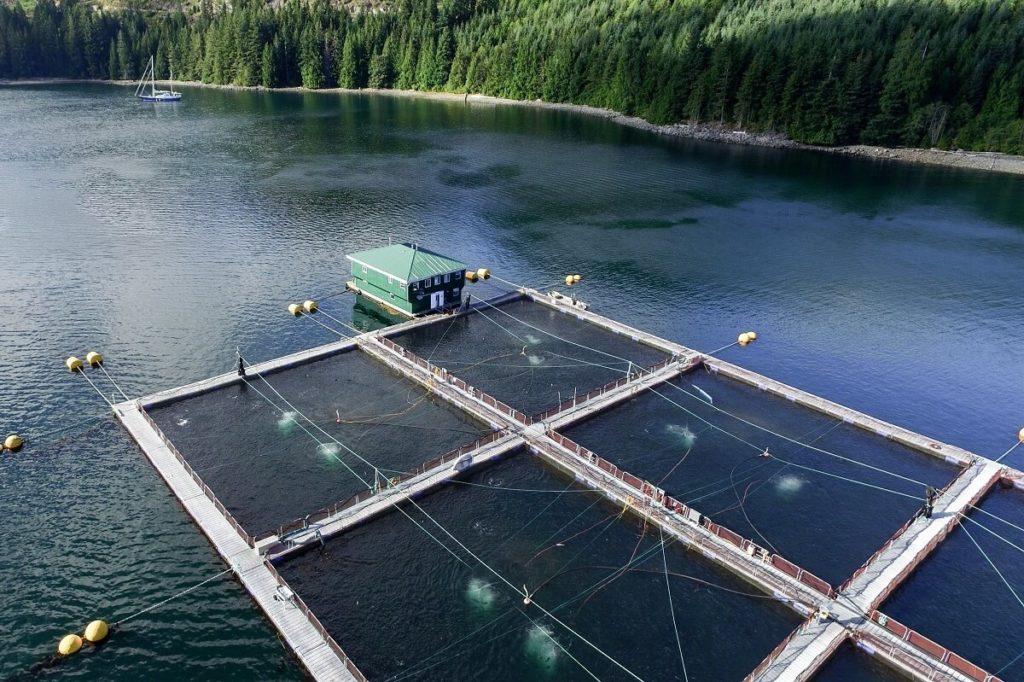 Рыбная ферма